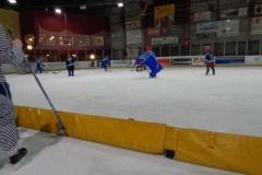 hockey027