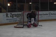 hockey038
