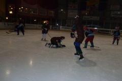 hockey042