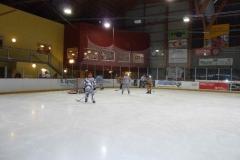 hockey046