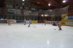 hockey048